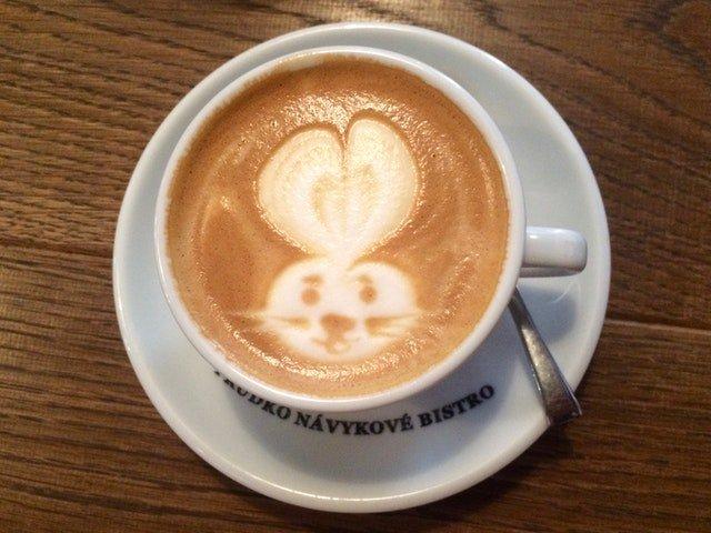 latte with rabbit design