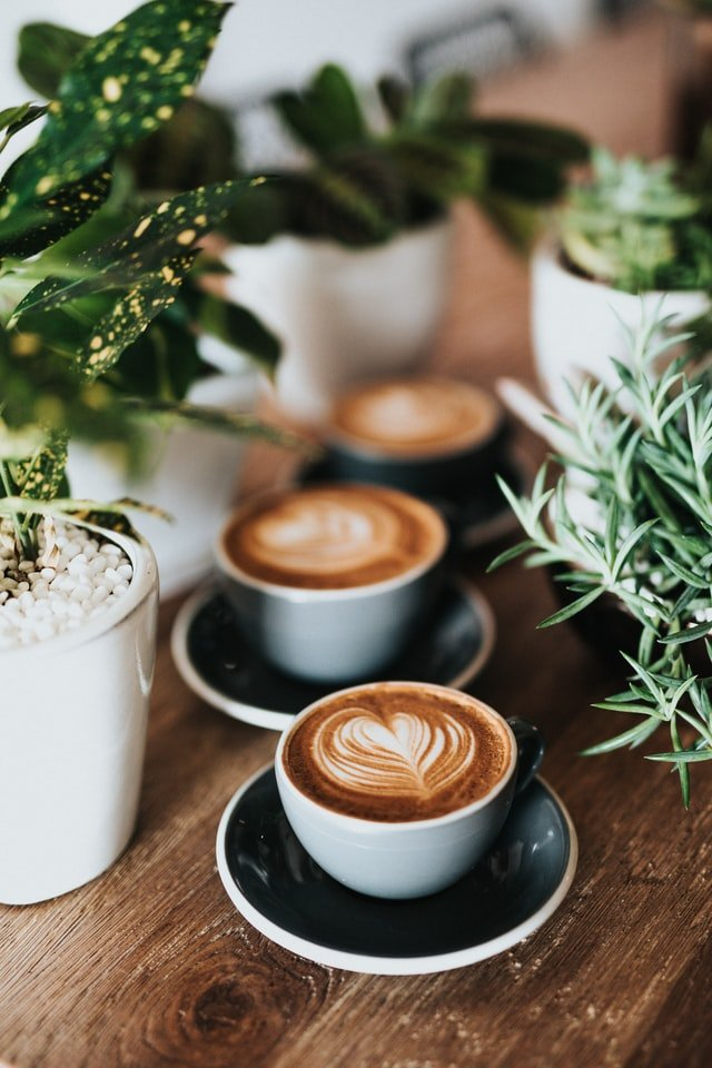 Latte With Plants On Table